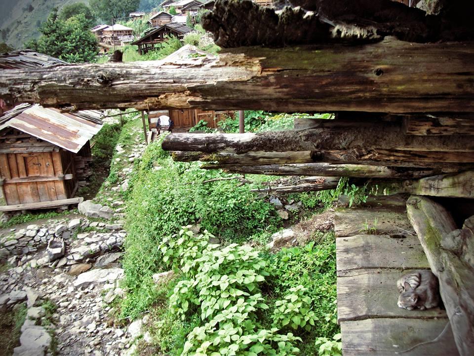 Village Life of Kalap