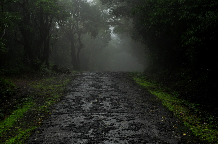 Mystic Roads en-route the ghats of Amboli