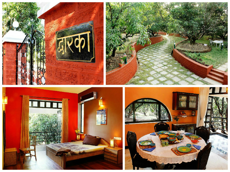 Explore the Farm life at Dwarka Homestay!
