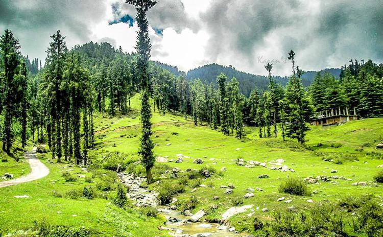 The Beautiful Janjheli Valley