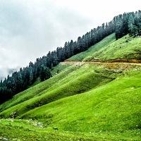 Janjheli Valley & Shikari Devi Trek