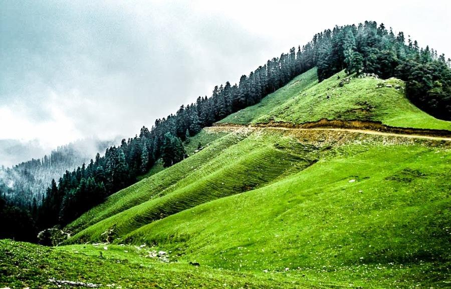 Hills of Shikari Devi Temple