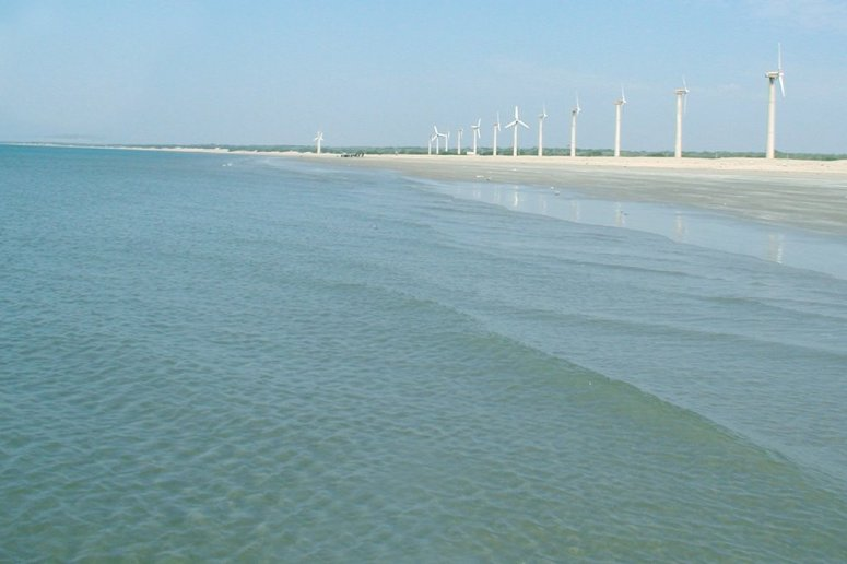 Windmills on the Mandvi Beach