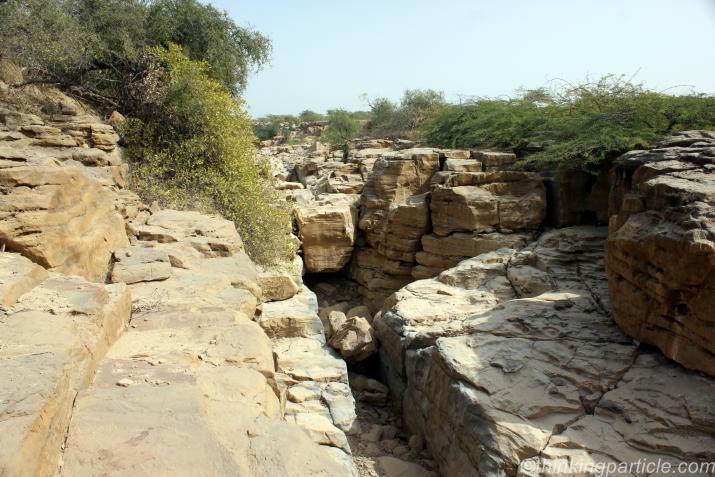 Ravines Near Kala Dungar