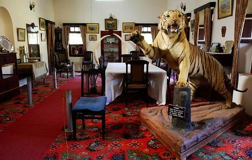 Royal Exhibits at the Sharad Bagh Palace