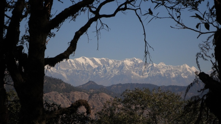 View of the Himalayan Range from the Dunagiri Temple