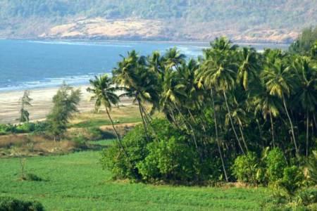 betul-beach