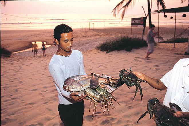 Fresh Catch at Zeebop, Utorda Beach