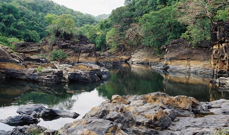 Cotigao Wildlife Ssanctuary Goa