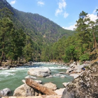 Mori, Uttarakhand