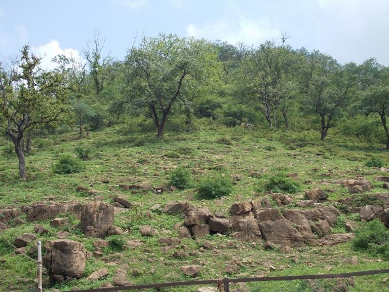 The Sacred Kamadgiri