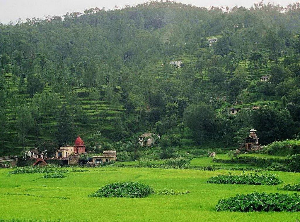 The Green fields of Deora Village, Mori
