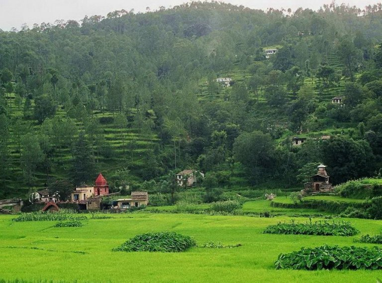 The Green fields of Deora Village, Mori