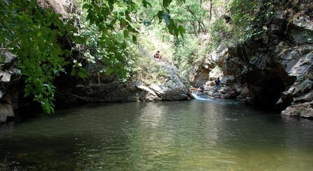 Lunagad Creek, Mori