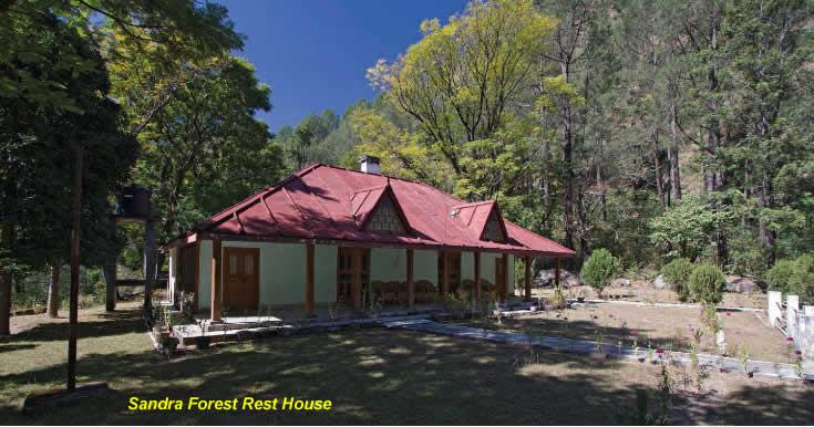 sandra1-forest-rest-house