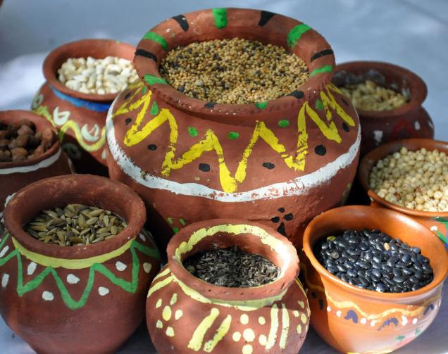 Food-sursingdhar