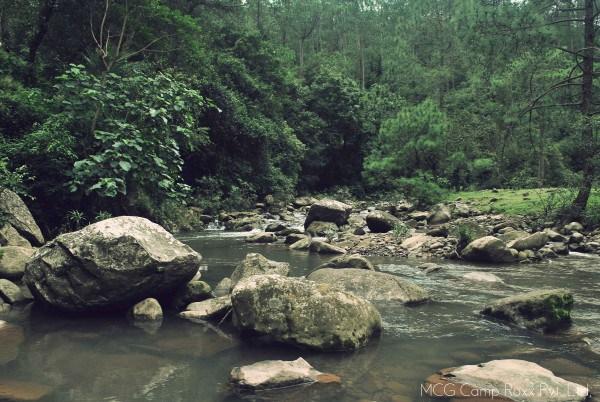 stream-camproxx