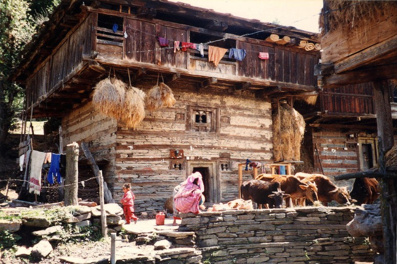 Traditional Wooden Houses at Rumsu Village, Manali