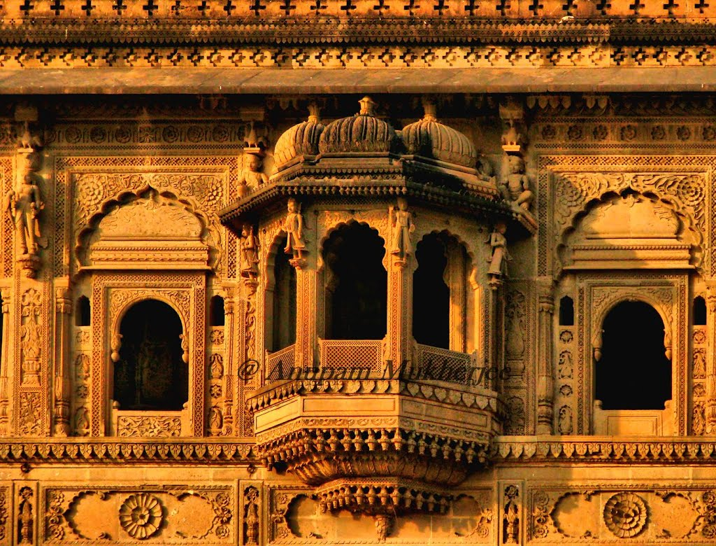 Intricate Carvings on the Ahilya Fort