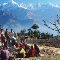 Sarmoli - Munsiyari Uttarakhand